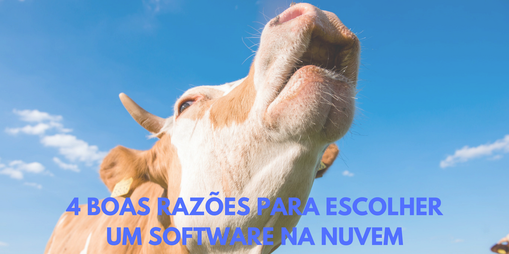 Software para gestão pecuária na nuvem