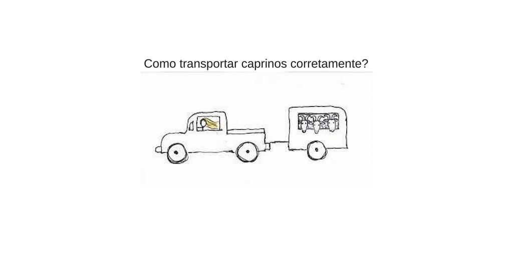 Dicas para transportar caprinos corretamente